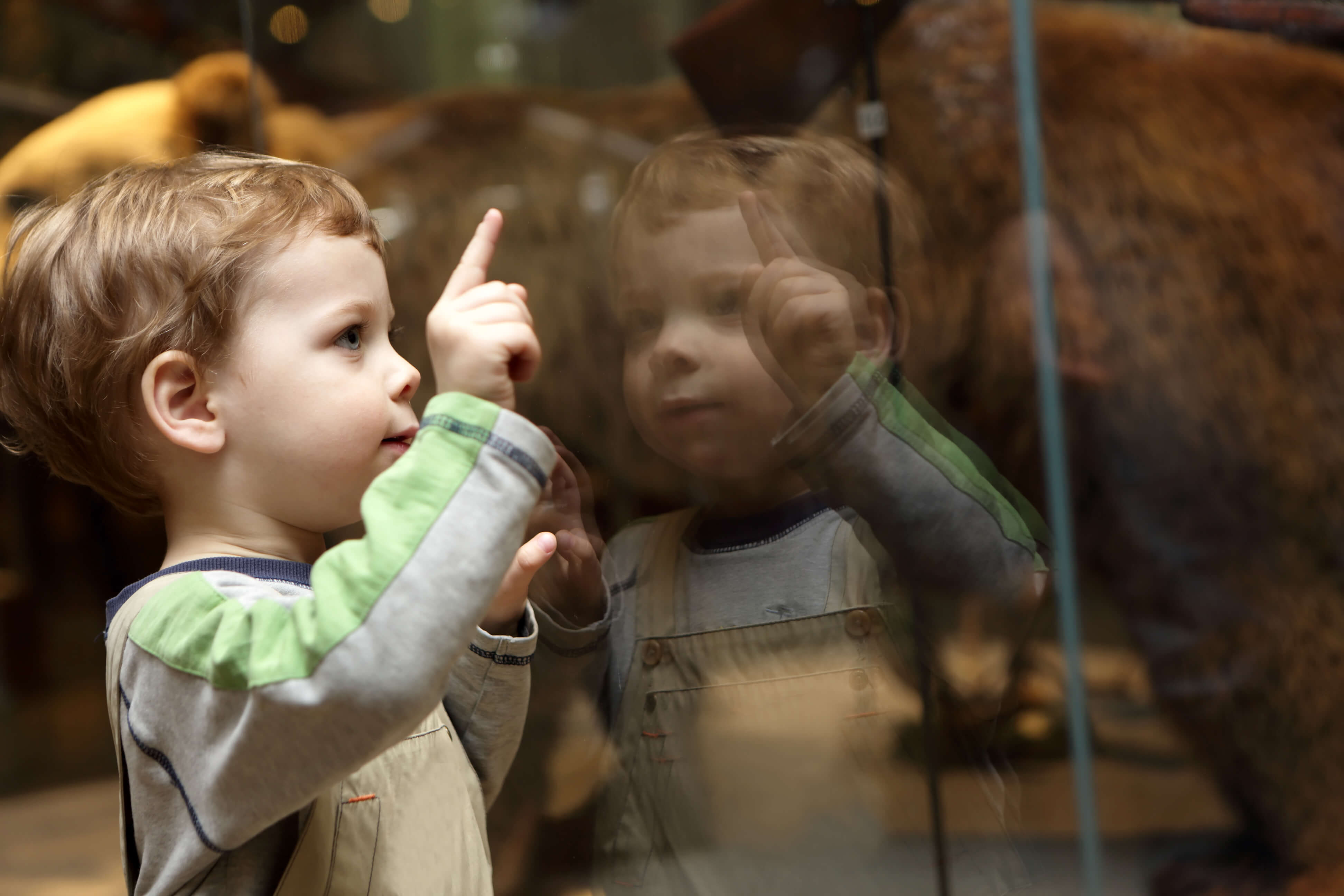 Portrait Of Curiosity Child In A Museum