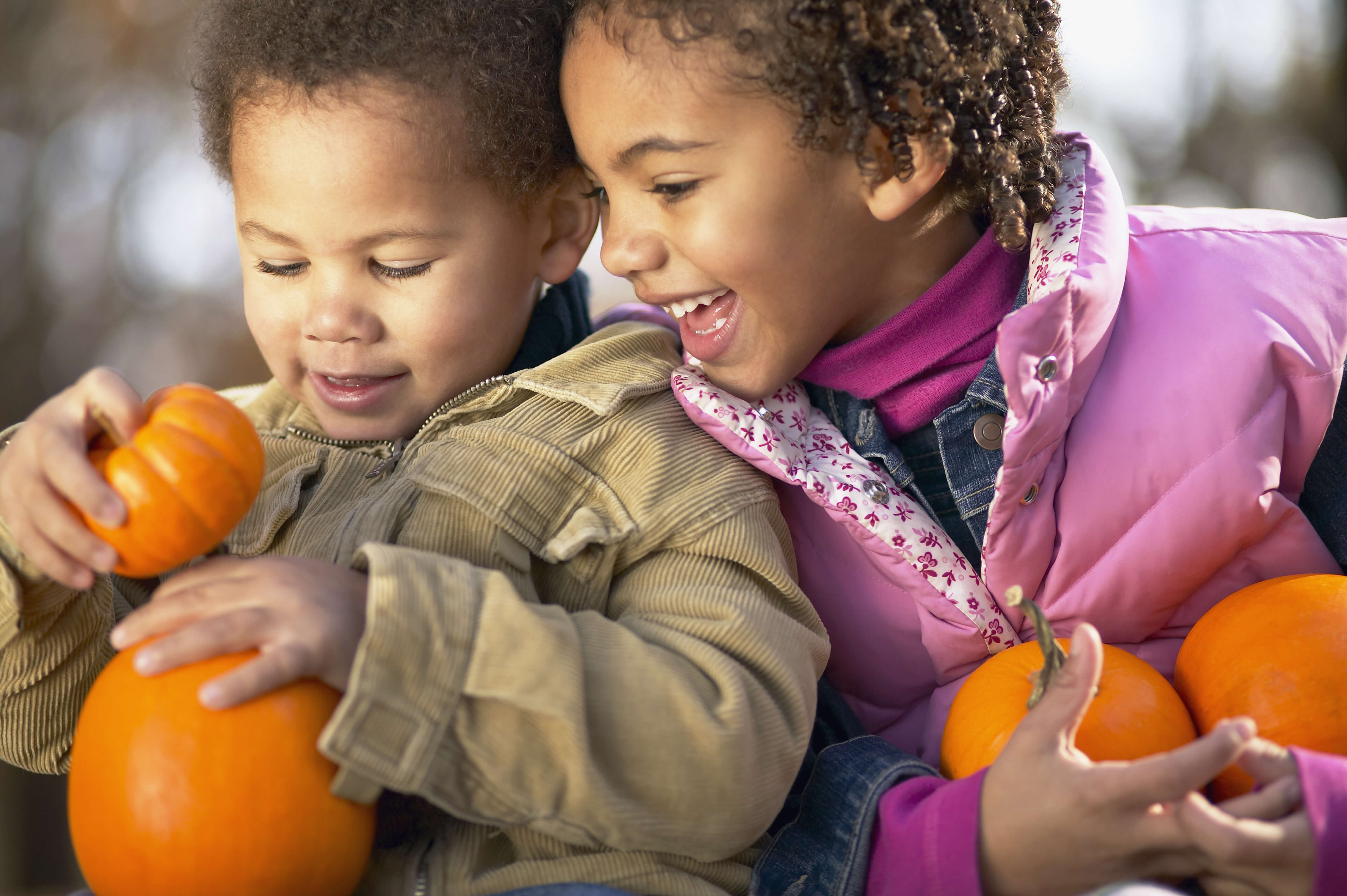 OUTDOOR FAMILY FUN: Pony Rides, Pumpkin Patch & More!