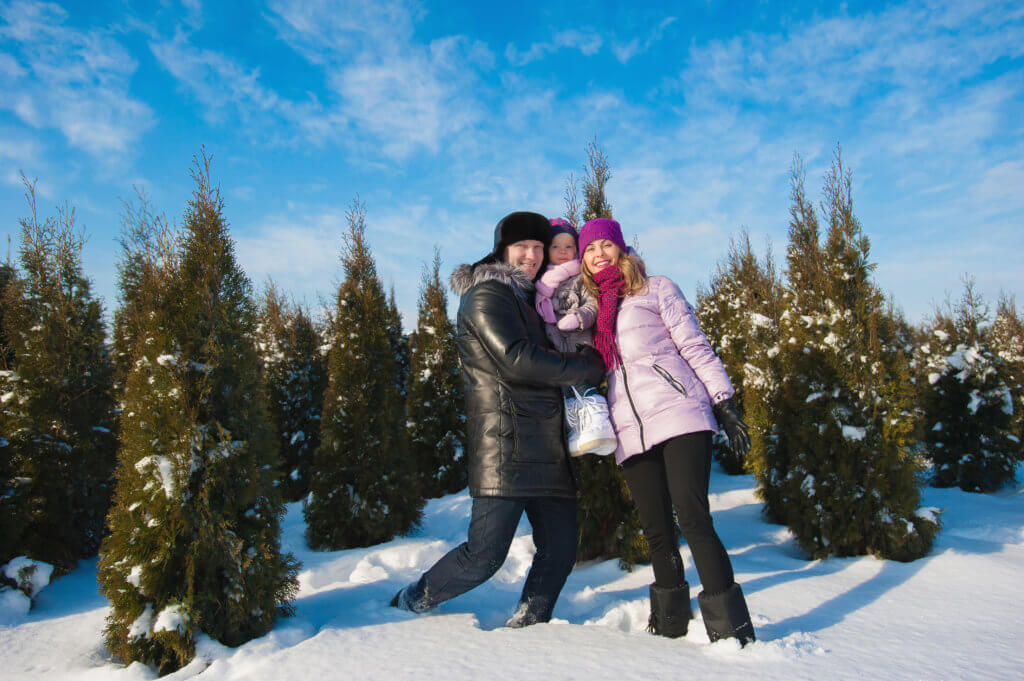 Young beautiful family in bright clothes choosing a Christmas tree, snow, lifestyle, winter holidays