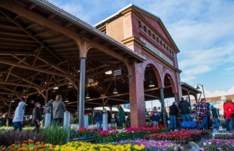 Flower Day Announced At Eastern Market With Online Orders