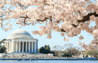 Top Things To Do With Kids In Washington DC