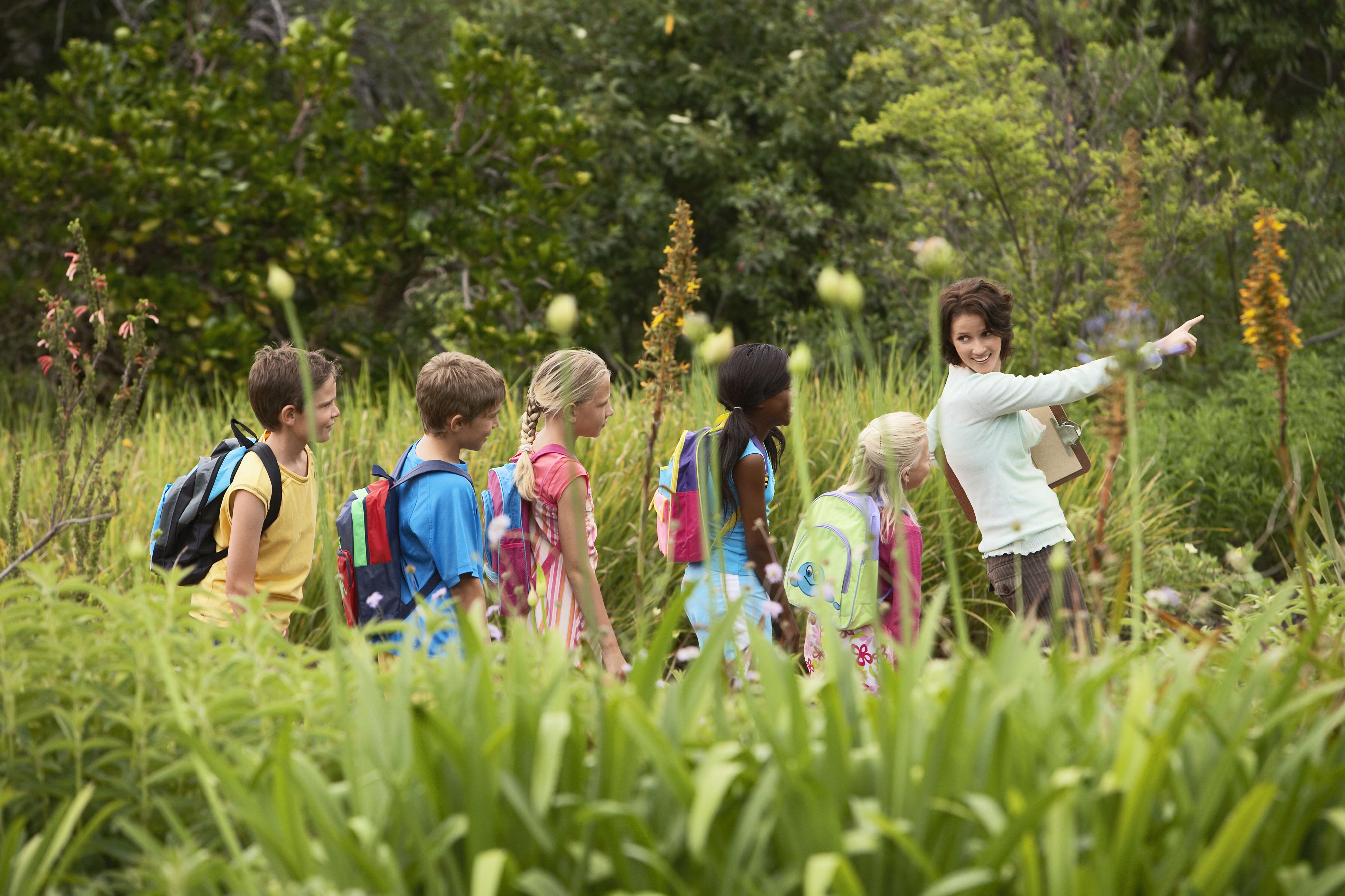 4 Benefits Of Nature Summer Camps