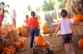 8 Fun Fall Activities For Families In Metro Detroit