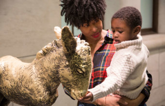 10 Things To Do With Kids At The DIA