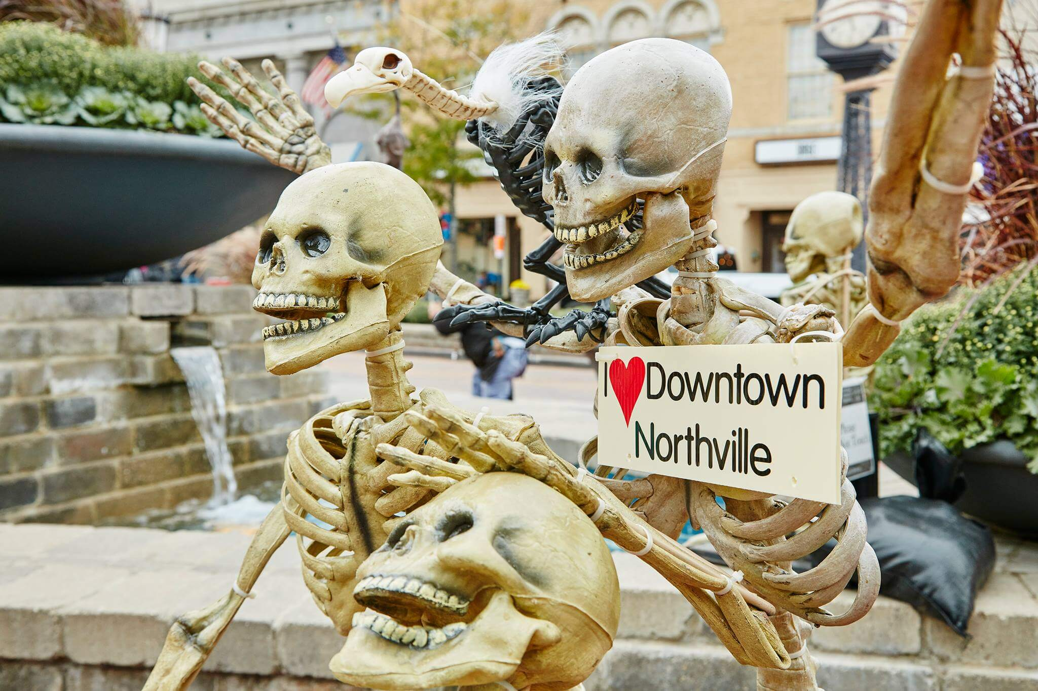 https://www.facebook.com/DowntownNorthville/photos/gm.873687836163214/10155511411407175/?type=3&theater