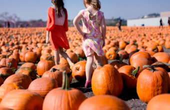 Top Things To Do With KIDS This Weekend: October 5 – 7