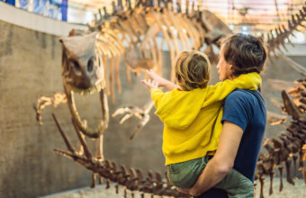 Top Things To Do With KIDS This Weekend: February 8-10