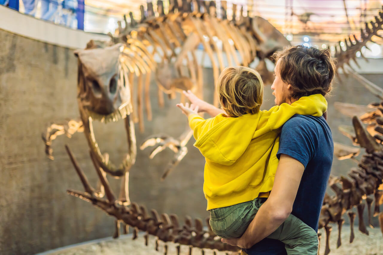 Dad and boy watching dinosaur skeleton in museum.