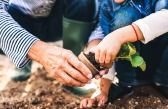 10 Fun Earth Day Activities For Kids