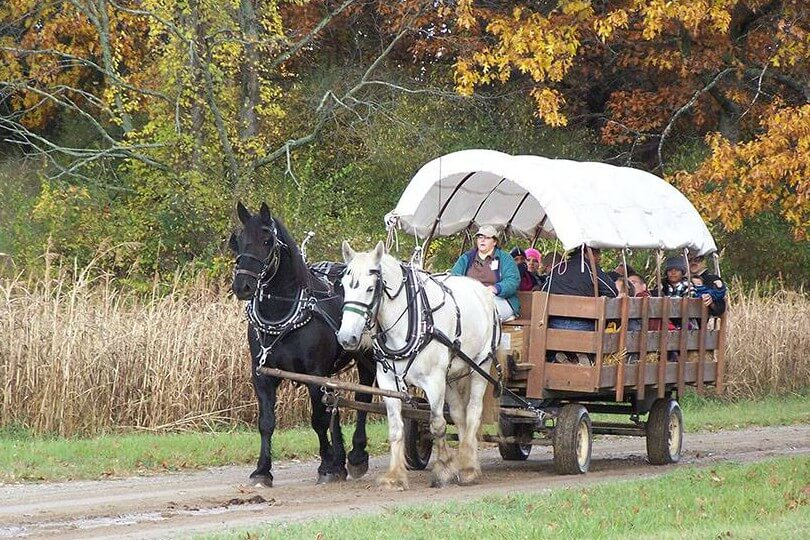 Grandparents' Free Hayrides