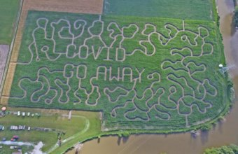 Family Guide To Corn Mazes In Metro Detroit
