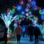 Where To See Christmas Lights In Metro Detroit