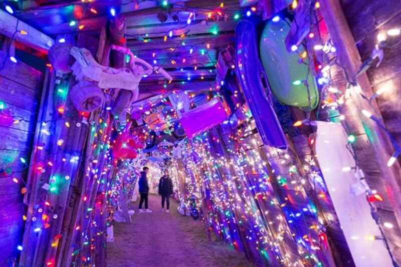 10 KID-FRIENDLY THINGS TO DO IN DETROIT IN DECEMBER