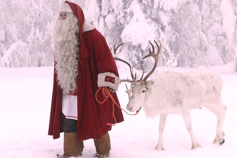 Reindeer From The North Pole Visit Wiegand's