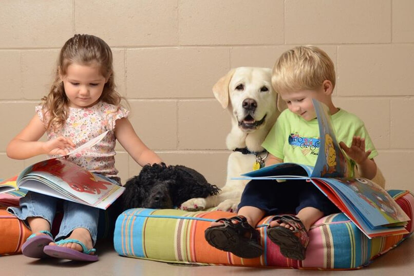 Barking Book Buddies! Read To A  Dog Program