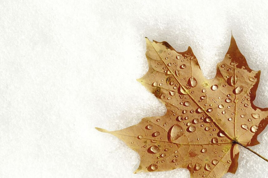 CANCELLED-Maple Month: Maple Sugaring Through The Ages