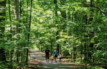 12 Easy Nature Walks To Do With Kids In Metro Detroit