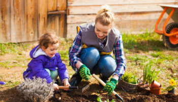 3 Steps To Starting A Vegetable Garden