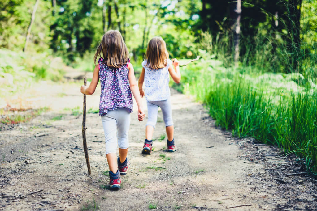 Children - twin girls are hiking in the mountains. Active family, parents and children mountaineering in the nature. Kids are walking in woods with walking sticks.