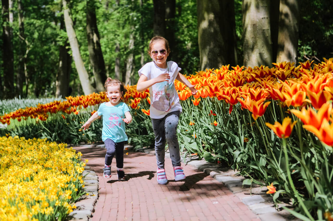Two sister girls having fun in multucolor tulips on tulip fields. Child in tulip flower field in Holland. Kid in magical Netherlands landscape with tulip field Keukenhof. Travel and spring concept.