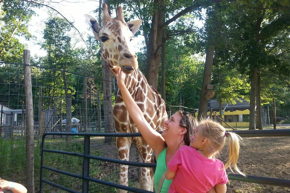 https://www.facebook.com/indiancreekzoopage/photos/a.365090440361822/676149179255945/?type=3&theater