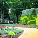 FREE Wizard Of Oz Inspired Garden Opens In Holland