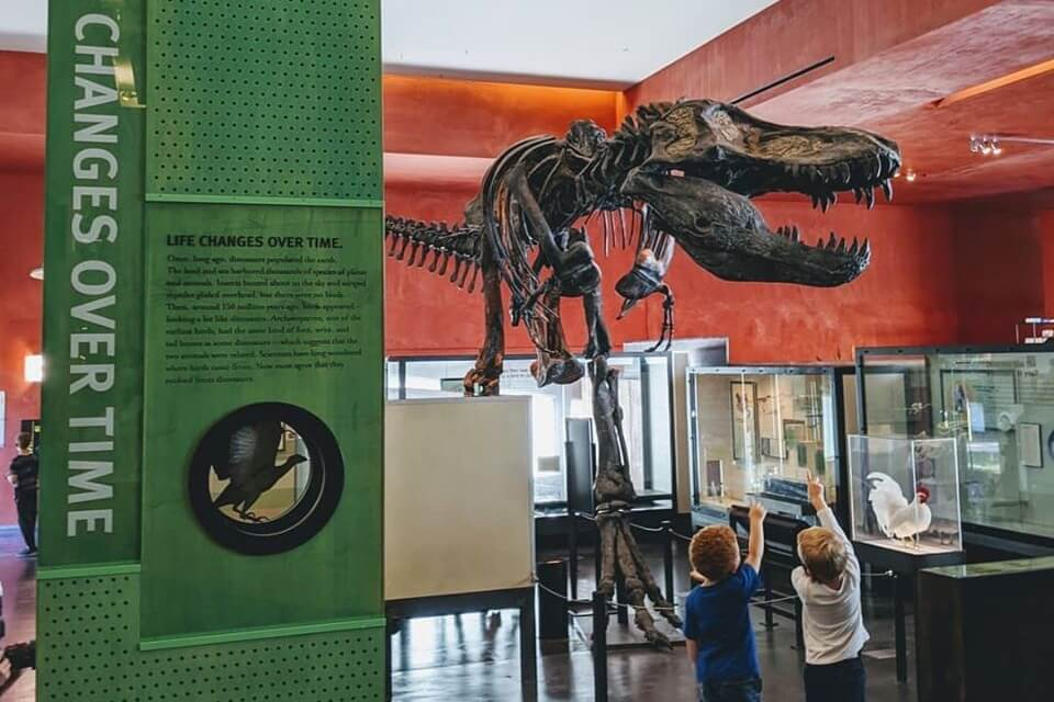 The Best Places To Take A Dinosaur Lover In Metro Detroit