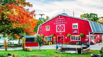 Best Cider Mills Around Metro Detroit