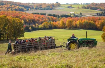 6 Reasons To Visit Petosky This Fall