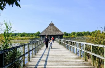 Explore The Bridges And Islands At Crosswinds Marsh Nature Preserve