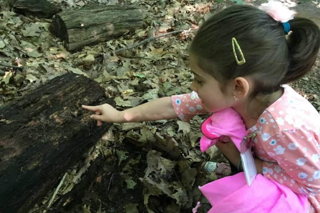 homeschool nature class wint nature center (1)