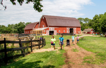 Maybury State Park Offers Nature Trails, Playgrounds + Farm Fun For Families