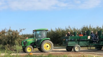 Erwin Orchards Offers U-Pick, Corn Mazes + Fall Fun For Family