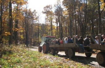 Find Weekend Fun At Upland Hills Farm's Harvest Festival In October