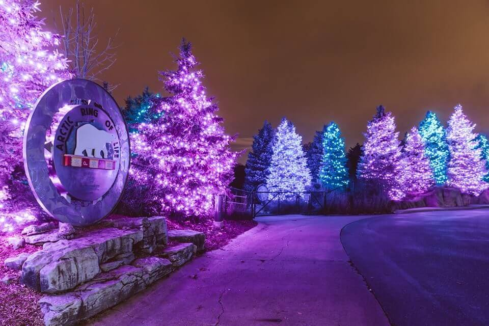 10 Outdoor Holiday Events In Michigan to Celebrate the Season