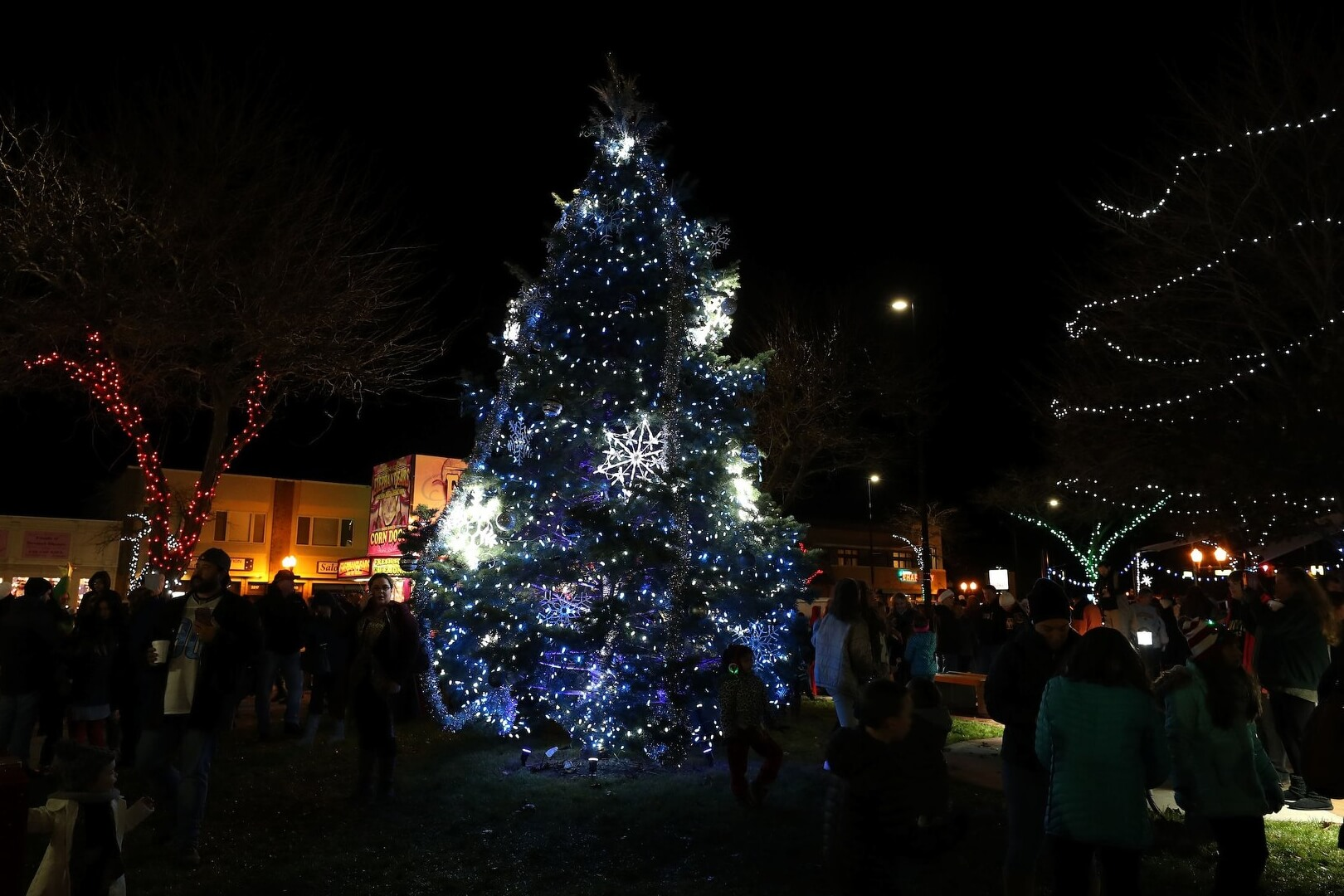 Wyandotte Tree Lighting And Cookie Walk (CANCELLED)