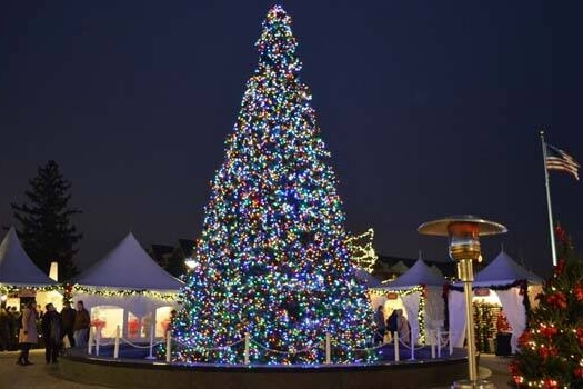 Holiday Magic Marketplace & Tree Lighting