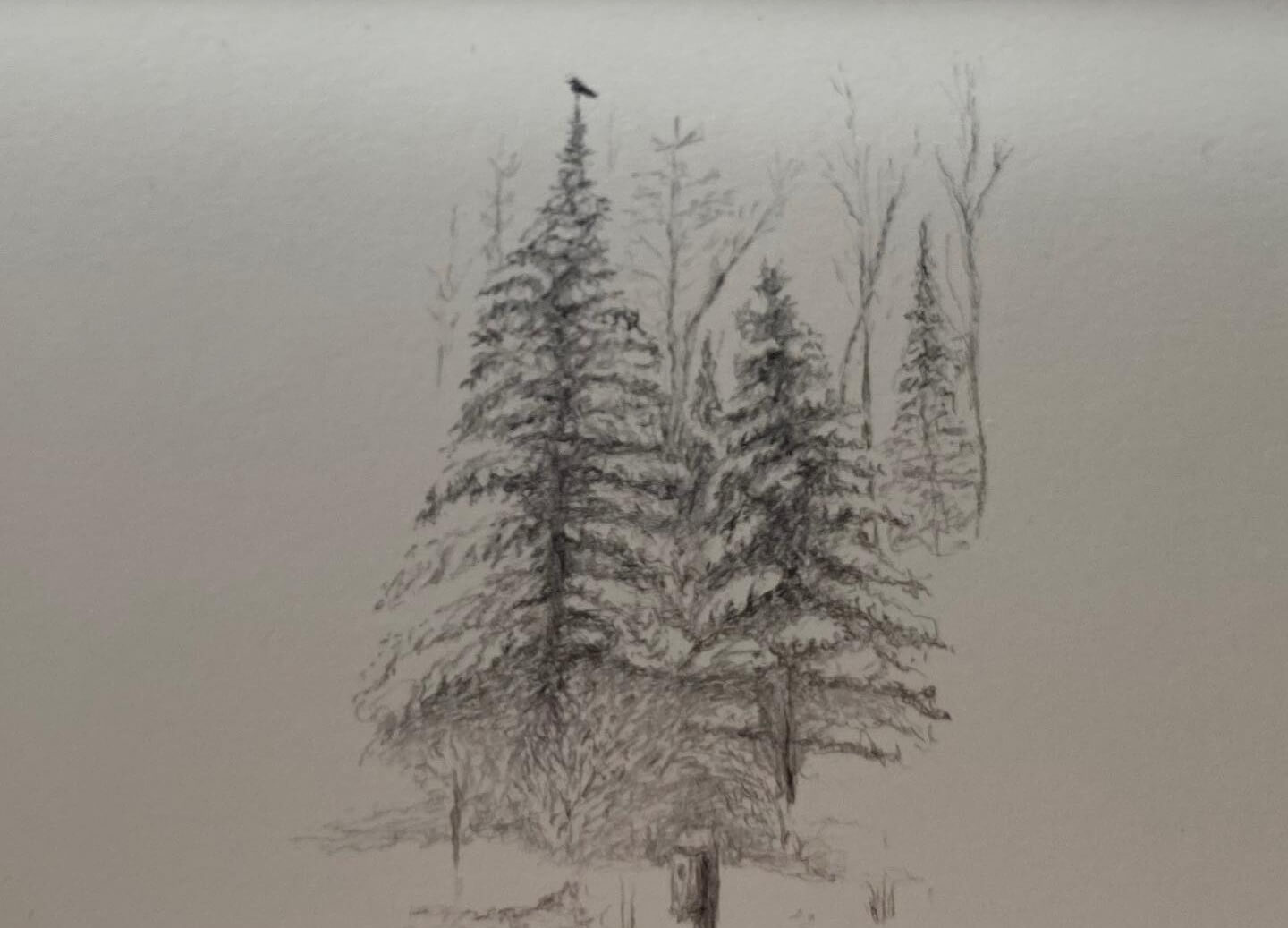 Winter Wonders: Hike-n-Sketch
