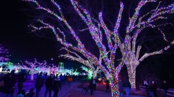 Our Favorite Family-Friendly Holiday Events In Metro Detroit 2020