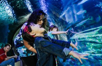 SEA LIFE Offers FREE Admission To Health Care Workers In May
