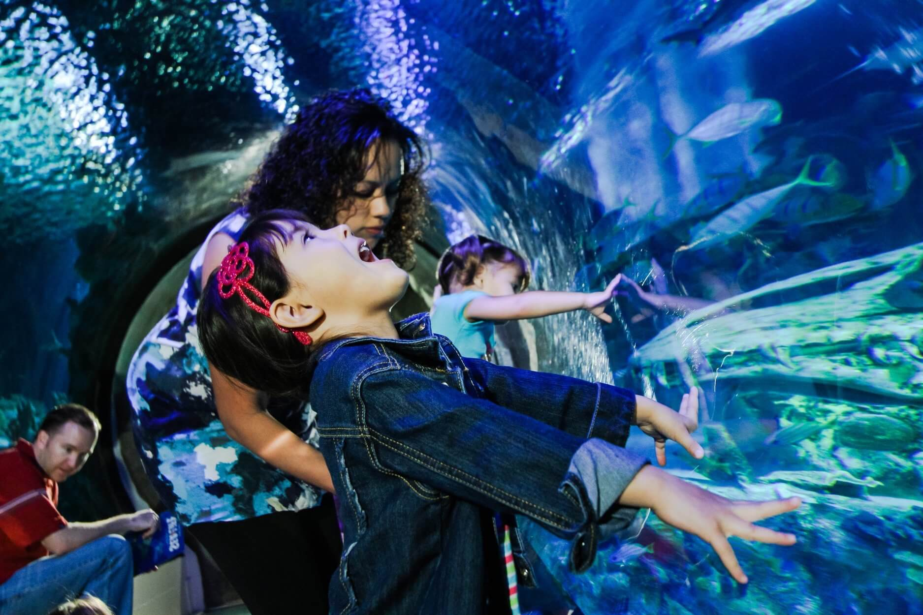 SEA LIFE Offers FREE Admission To Essential Workers
