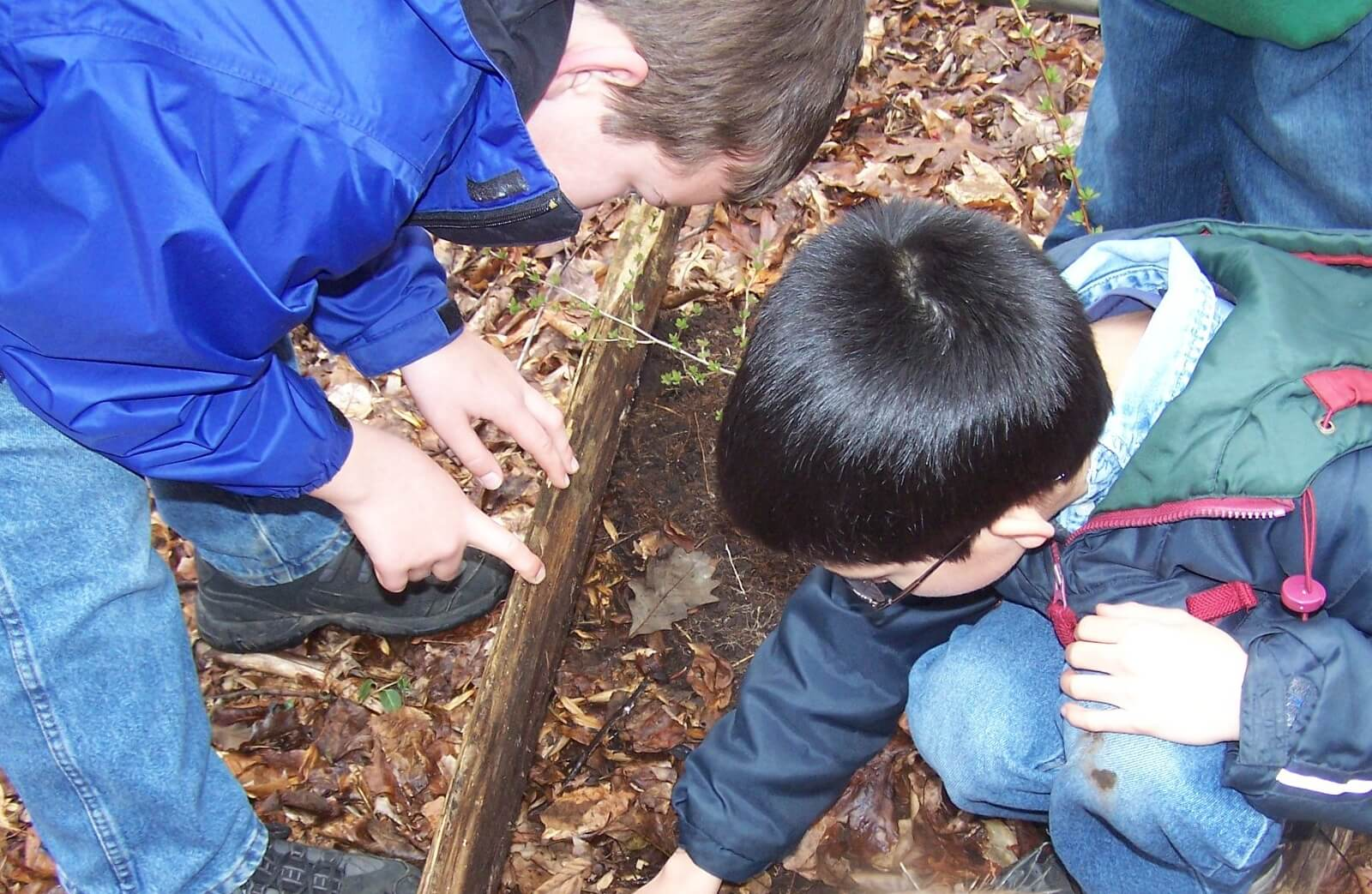Boy Scout Webelos: Into The Wild
