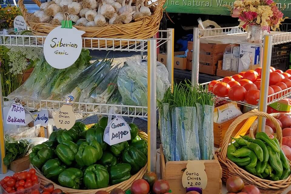 Northville Farmers Market – Opening Day