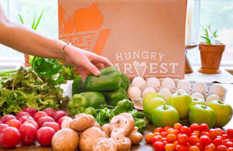 5 Reasons We Use + Love Hungry Harvest For Groceries: Price, Convenience + Waste-Fighting