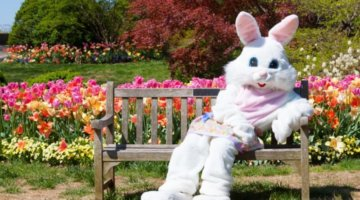 Bunnyville At The Detroit Zoo Is Back For 2021