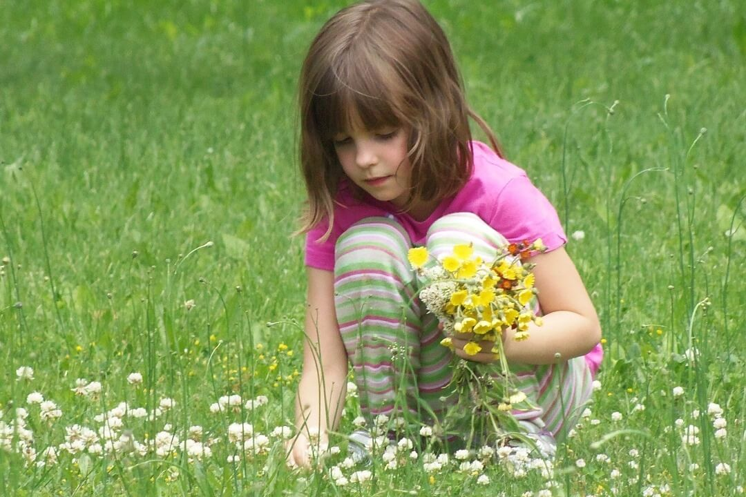 Young Outdoor Explorer's: Flowers, Sweet Flowers