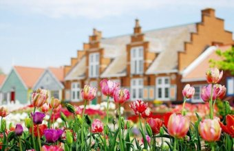 Plan A Trip To Holland For Tulip Time This Spring
