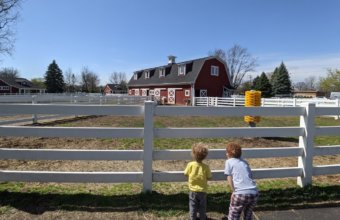3 Best Places To Go In Taylor With Kids