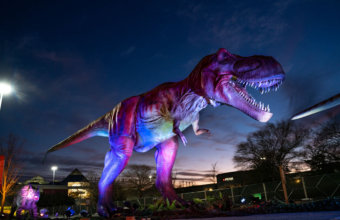 ANNOUNCED: Dino Safari Coming To Novi In May