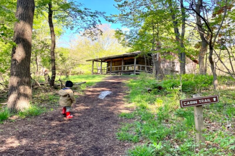 Explore Nature, Walk The Story Book Trail + Attend Classes Or Camp At E.L. Johnson Nature Center